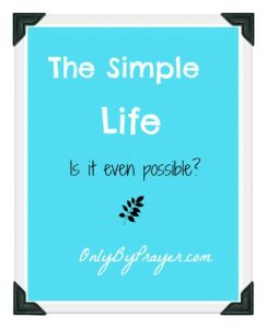 Simple Life Possible Pin