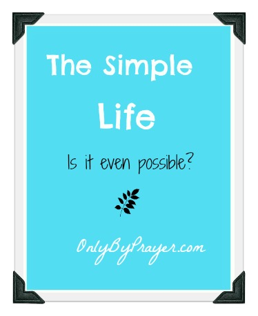 Pretty good at knowing what the simple life isn t it s what