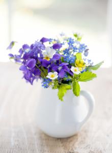 Rest Flower