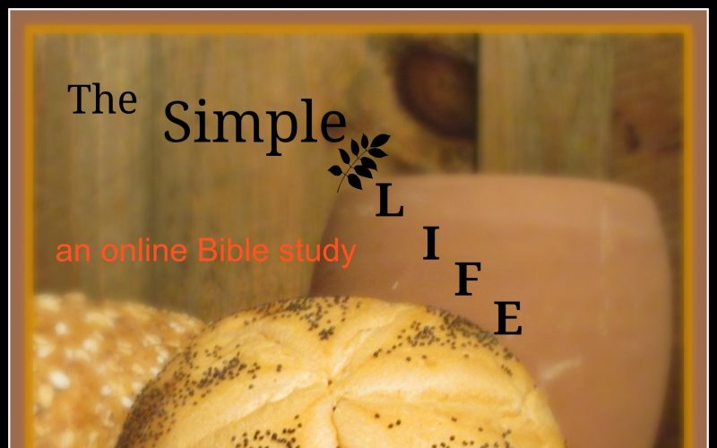 Online Bible Study: The Simple Life