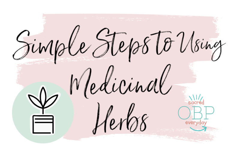 Simple Steps to Using Medicinal Herbs